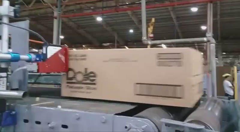 چاپگر HP در کارخانه DOLE